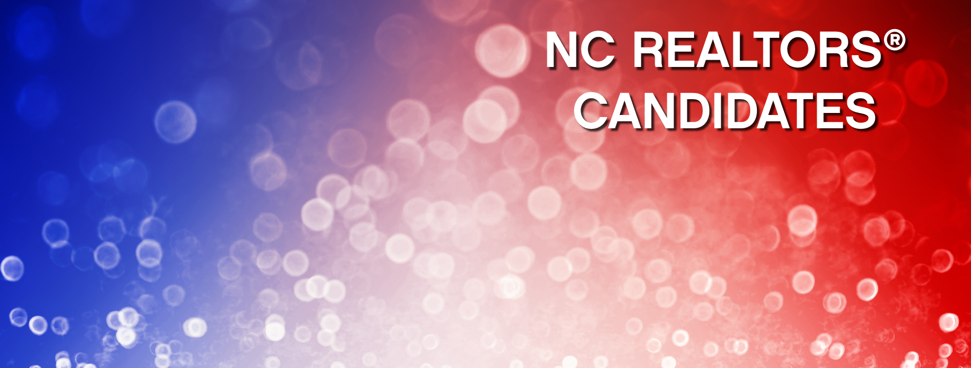 NCR Candidates Website Slider